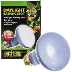 Exo terra Daylight Basking Spot 75 W