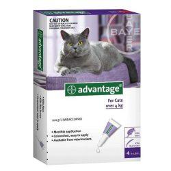Advantage 80 Spot On csepp 4 kg feletti macskáknak és nyusziknak 1 ampulla