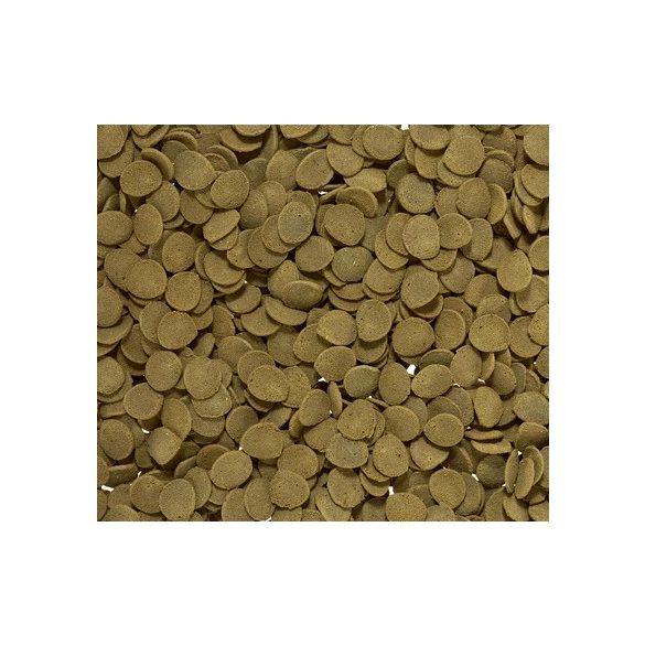 Sera Wels-Chips 250ml Harcsa eledel